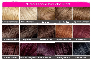 Hair colour chart for wigs